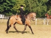 Angela Fois on Lusitano stallion Embucado at Royal Windsor