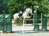 Sophie on Finn, water jump, Addington